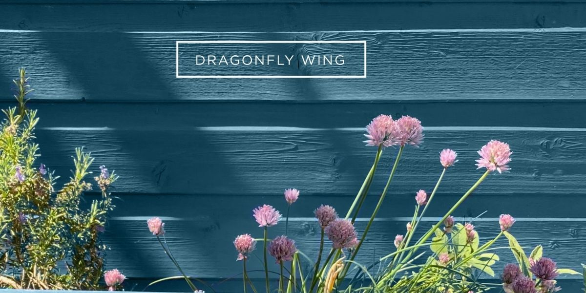 Colourtrend Bring Colour to your Outdoor Living with Rachel Hobbs   Weirs of Baggot St   Shop Online