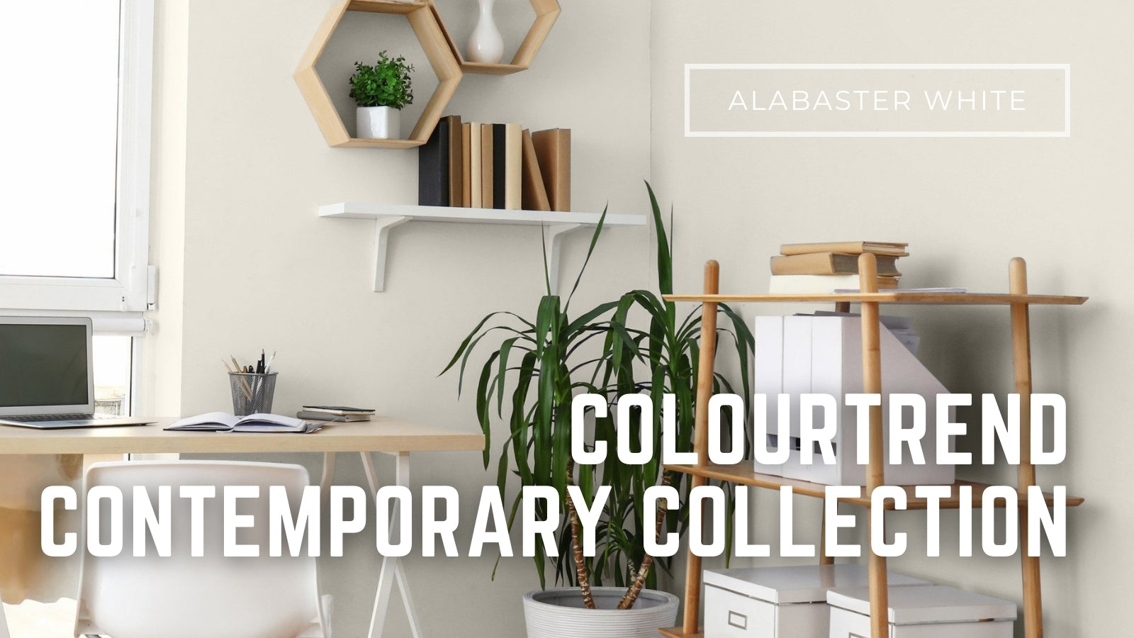 colourtrend contemporary collection available online paint delivery in ireland
