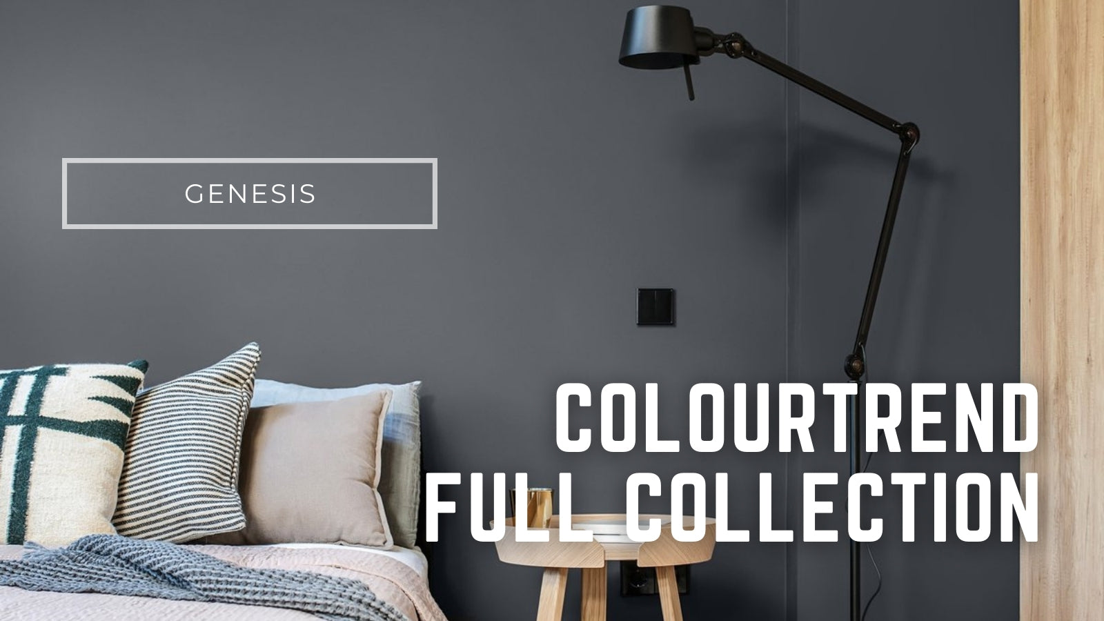 colourtrend full collection available online paint delivery in ireland
