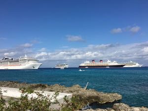 Cruise Expansion Step 2: Top 20 Port Cruise Ship Visit Projections