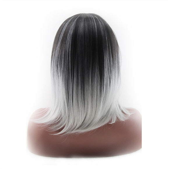 High-temperature Synthetic Shoulder Length Fiber 3/7 Part Straight Women's Ombre 2 Tones Full Wigs / Hair Dark Roots - Goddess Beauty Royal Wigs