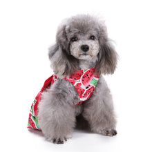 Watermelon Print Dog Dress with Bow | Dog Clothes