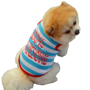 100% Awesome Dog Shirt | Dog Clothes