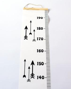 Height Ruler Canvas