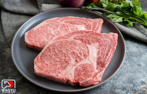 A5 Japanese Wagyu Beef Ribeye Steaks | Authentic Japanese Wagyu Beef | The Wagyu Shop