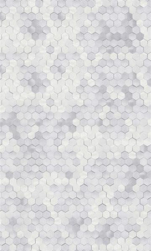 Shimmering Hexagons R5675