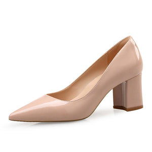 High Heel Women Pointed Toe Dress Shoes