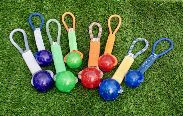 "Medium 2.5""Sqeaker ball on a rope/firehose handle"