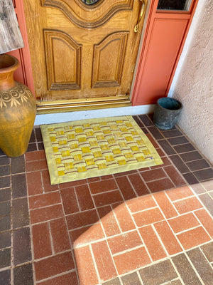 Dog/door mat