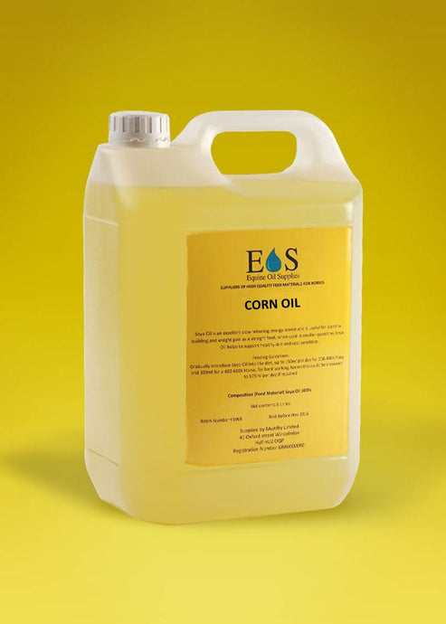 Corn / Maize Oil