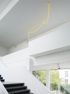 Muller Van Severen Neon Light
