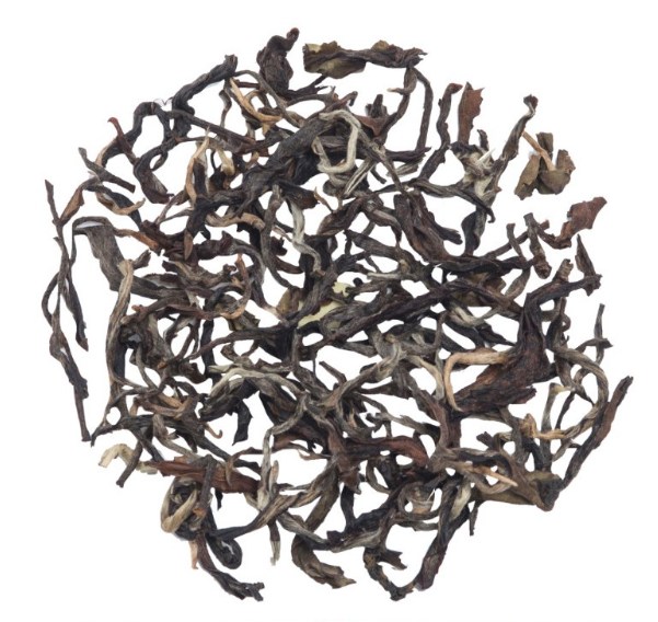 Glenburn Darjeeling Autumn Oolong Tea