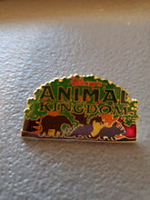 Disney Pin: Animal Kingdom Pre-Launch