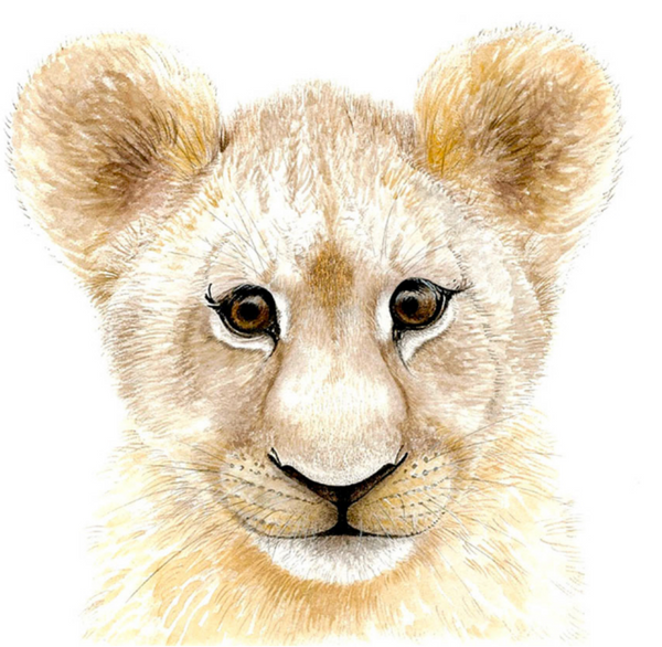 Baby Safari Animal Watercolors