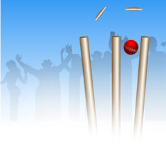 cricket strategic partnerships