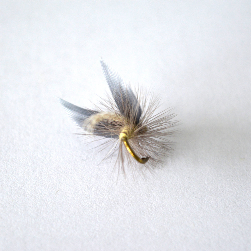 Insect Fly Fishing Lure