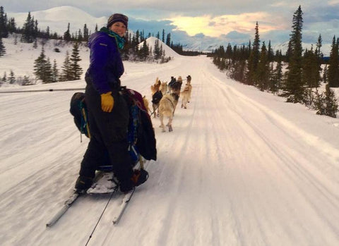 Ryne Olson mushing her dogs near Fairbanks, Alaska