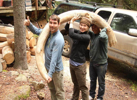 Excavating woolly mammoth tusks in the Yukon, Canada