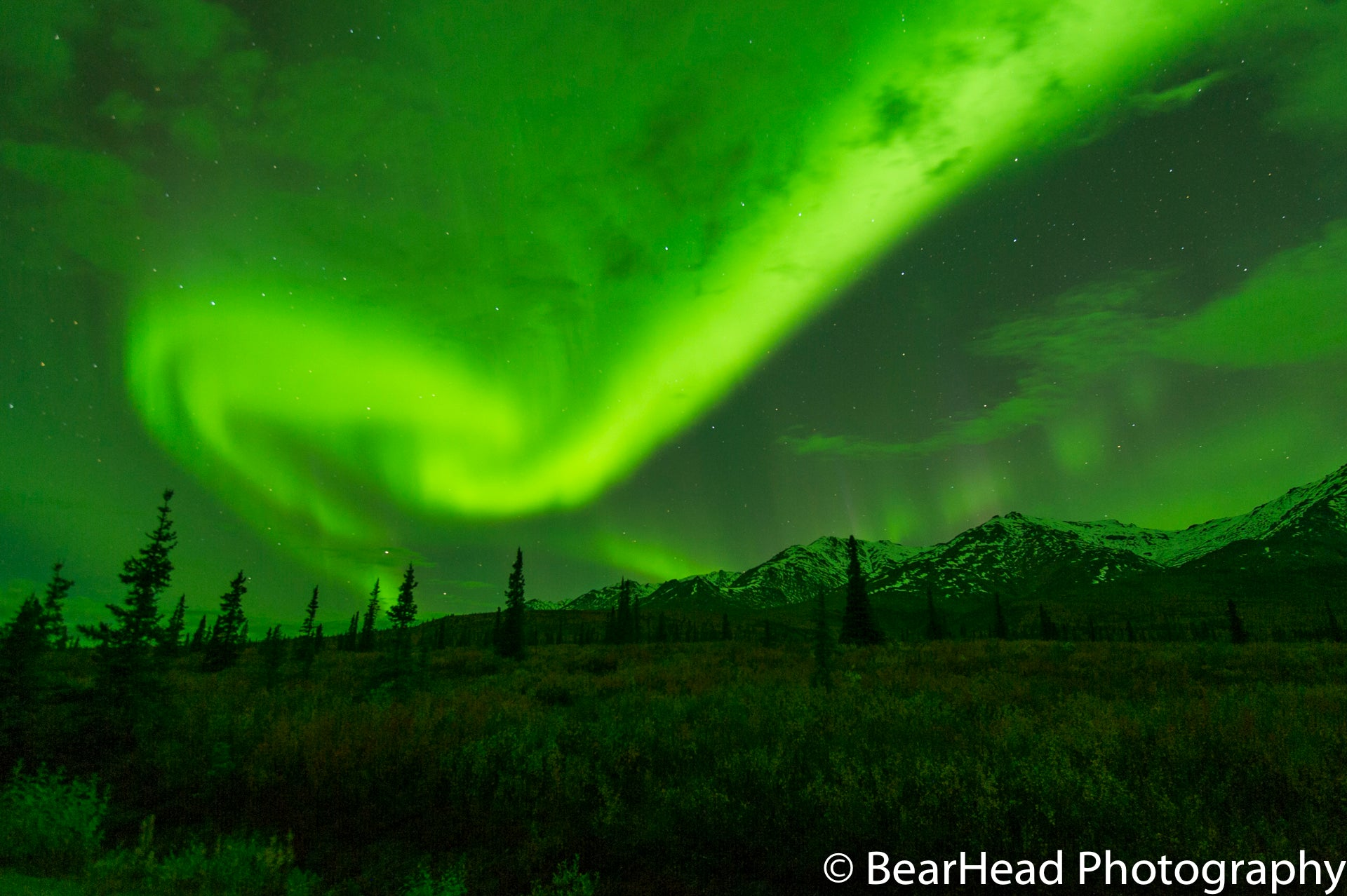 Photograph of the northern lights by Bearhead Studios in Skagway, Alaska