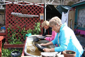 Gold panning with Back Alley Rock Shop in Skagway, Alaska