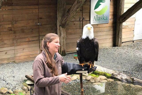A naturalist talks about bald eagles at the Alaska Rainforest Sanctuary in Ketchikan, Alaska