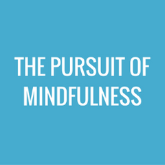 The Pursuit of Mindfulness Bagby