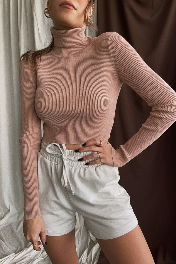 Kendall Turtleneck Crop Sweater