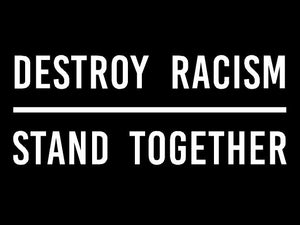 Destroy Racism - Stand Together Benefit Tee