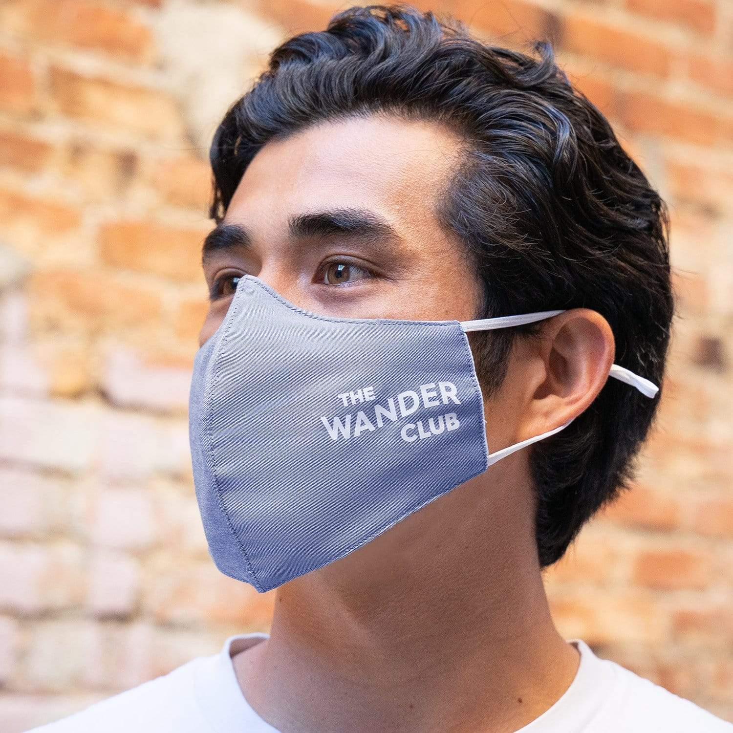 Face Mask (Chambray)