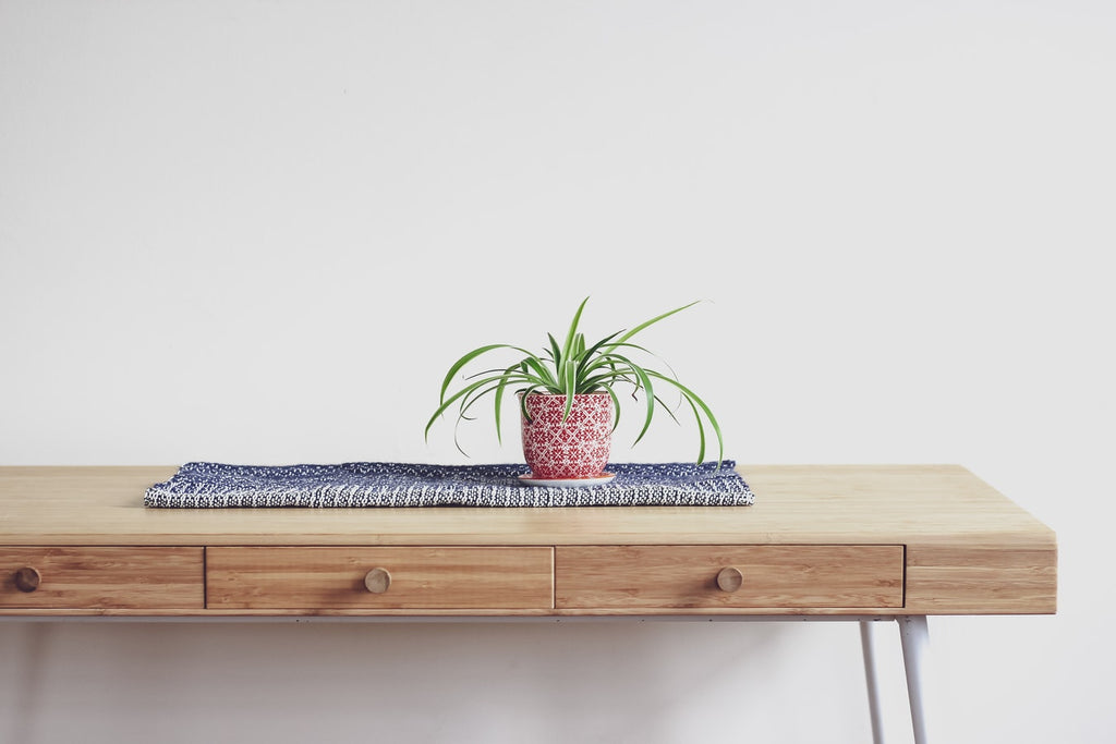 Gorgeous Plants for Cleaner Indoor Air
