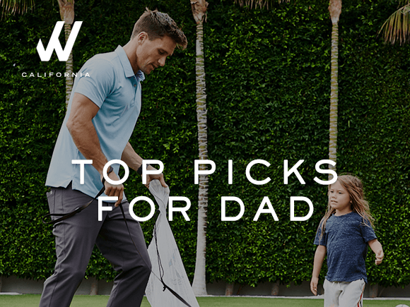 Top Picks For Dad