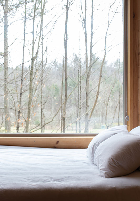 Bed by window