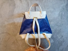 Load image into Gallery viewer, TBF-0001 Blue and cream back pack