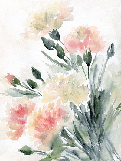 watercolor carnations