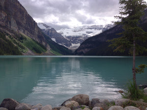 Private Transfer: YYC Airport / Calgary Hotel to Lake Louise, AB