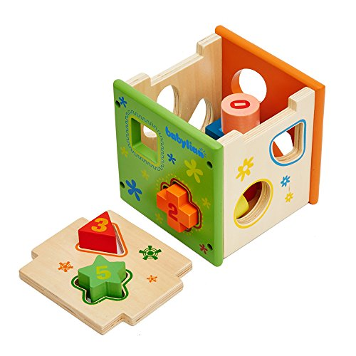 [Us Cpsc Certificated] Babylian Educational Sorting Cube Toys Bricks Of Different Wooden Shapes And Colors For 1-3 Years Old Young Childhood Intellectual Education