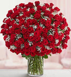 85 Magnificent Red Roses