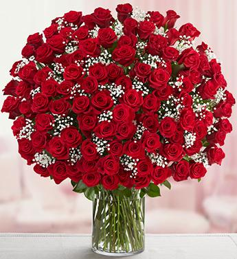 70 Magnificent Red Roses