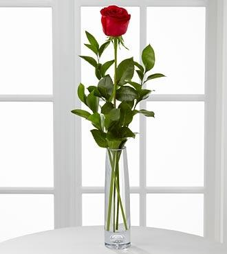 Elegant Single Red Rose