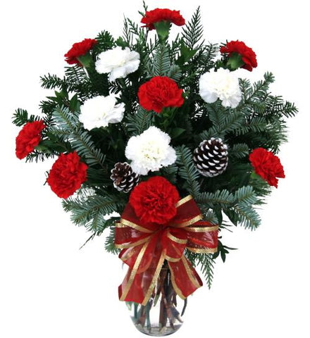 Dozen Holiday Carnations