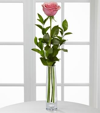 Classic Single Pink Rose