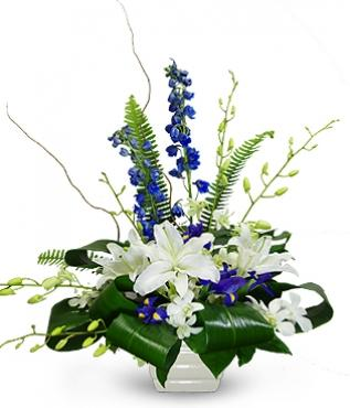 Blue Heaven Arrangement