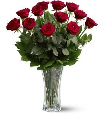 Dozen Premium Long Stem Roses