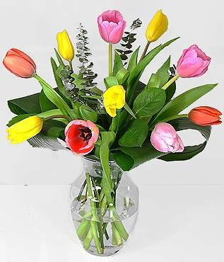 10 Mixed Tulips
