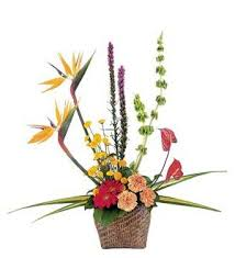 TF 187-5 Tropical Style Basket