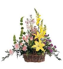 TF 199-9 Spring Flowers in Basket