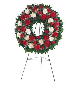 TF207-2 Red & White Carnation Wreath