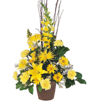 TF211-3 Yellow Triangular Arrangement