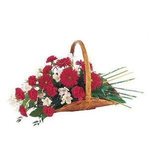 TF214-2 Red & White Fireside Basket