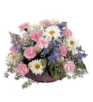 TF220-2 Pastel Arrangement